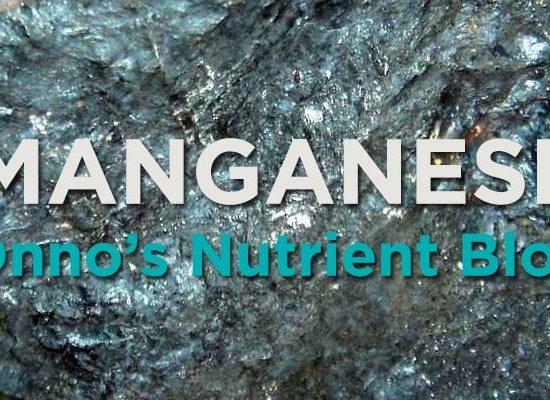 Manganese Nutrient