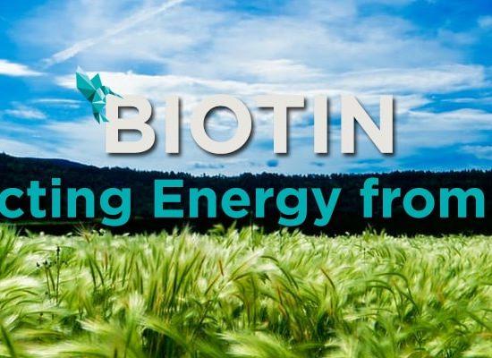 Biotin Food Energy