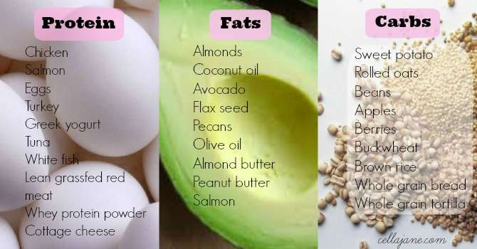 Healthy Protein Fats Carbs