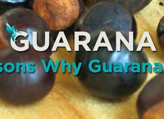 5 Reasons Guarana Rocks