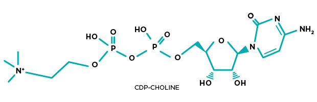 CDP-Choline Structure