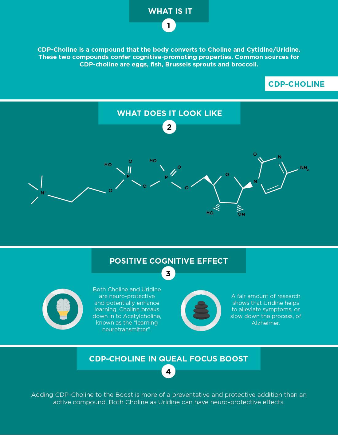Factsheet CDP-Choline