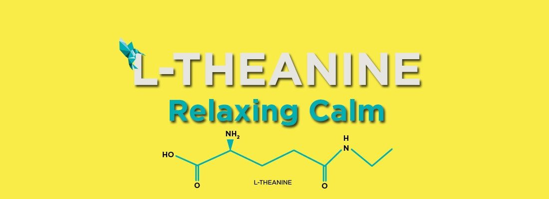 L-Theanine Blog